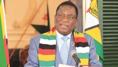 Photo of Mnangagwa shocked by mansions in Harare's leafy suburbs