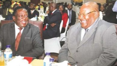 Photo of Zanu-PF says President Mnangagwa is nation's best hope