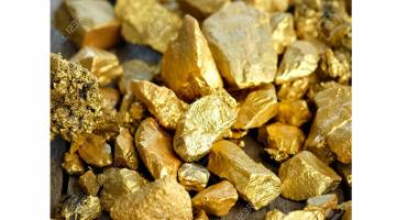Photo of 12 men arrested for stealing gold ore